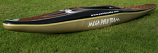 Mega Evolution Polo kayak